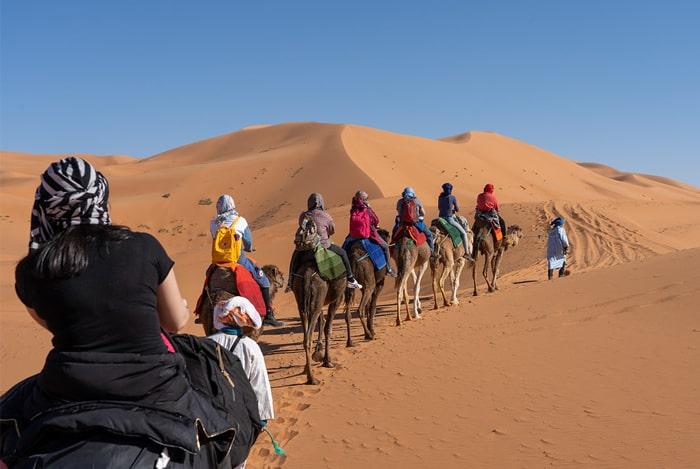 Merzouga Excursiones en Camellos