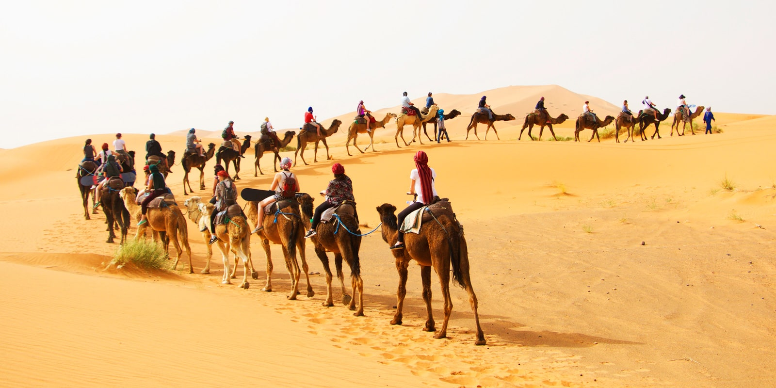 Morocco Tours Agency