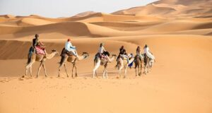 best morocco desert