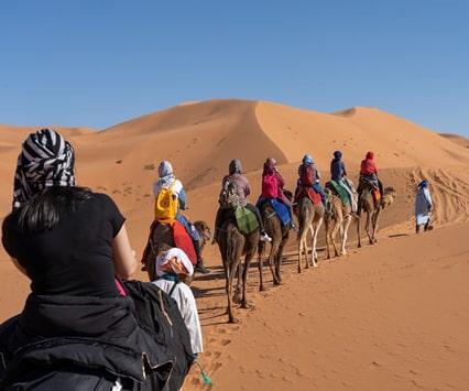 day night camel trekking merzouga