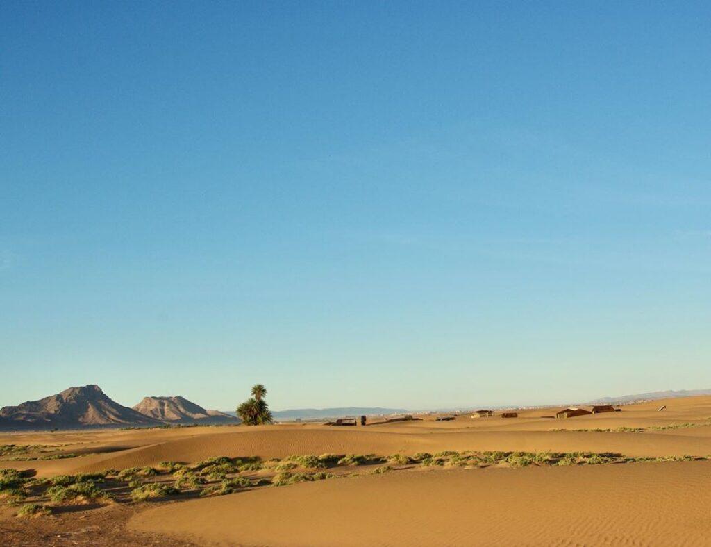 zagora sahara