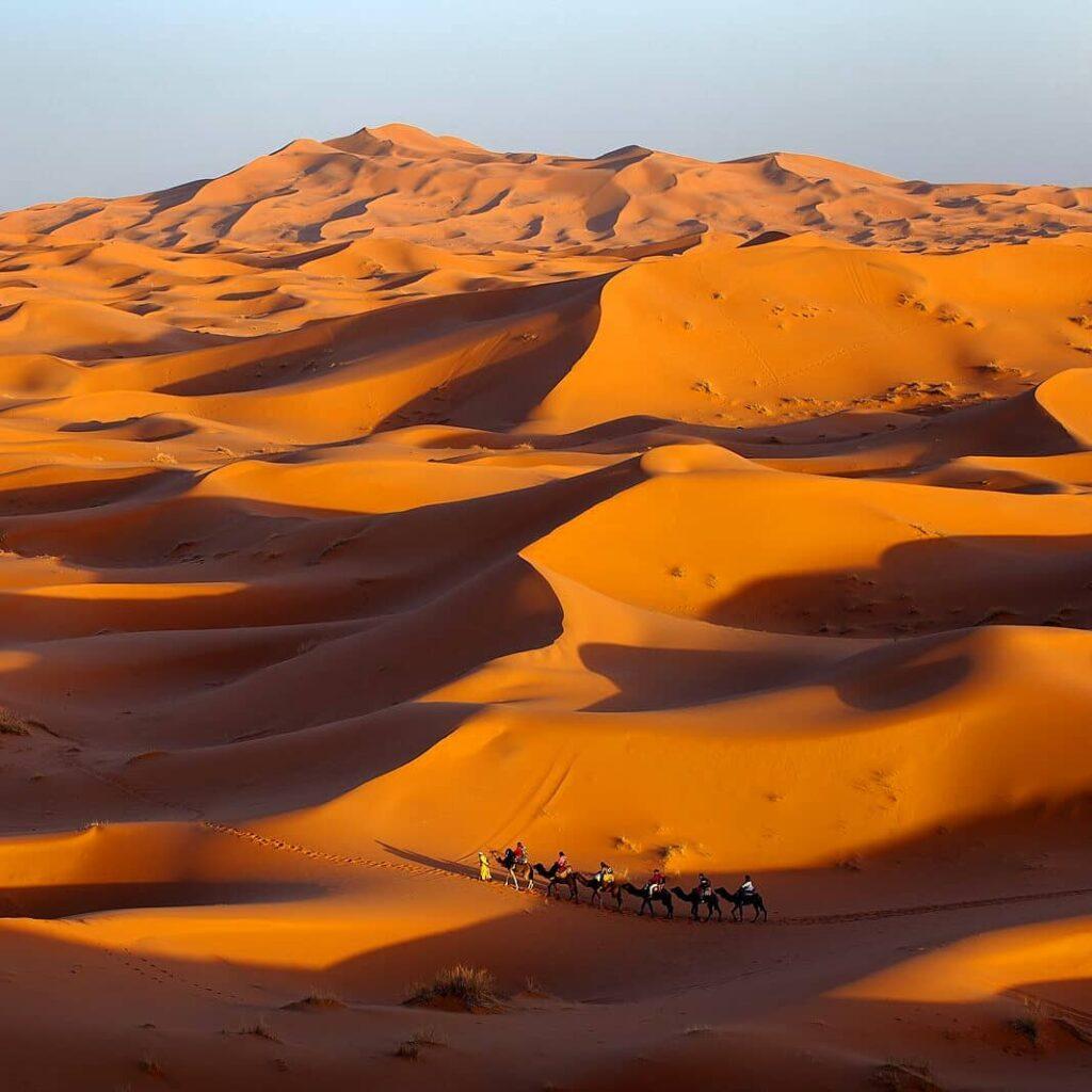 zoagora or merzouga desert
